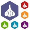 Garlic icons set hexagon