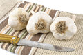 Garlic with kitchen knife Stock Image