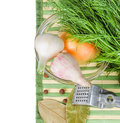 Garlic, onion, dill, bay leaf and spices Royalty Free Stock Image