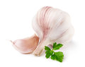 Garlic with parsley isolated on white background Stock Image