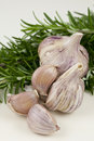 Garlic and Rosemary Stock Photo
