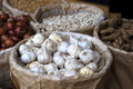Garlic in selling at market white Royalty Free Stock Photos