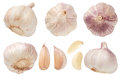 Garlic set isolated on white background. Top view. Royalty Free Stock Photo
