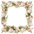 Garlic thyme frame composition collage Stock Image