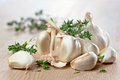 Garlic and  thyme Royalty Free Stock Photo