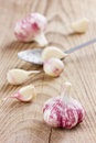 Garlic whole and cloves on a rustic background wooden Stock Images