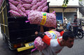 Garlic workers unload in solo central java indonesia Stock Photos