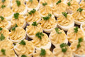Garnished catered eggs Royalty Free Stock Photography