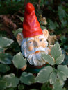 GartenGnome im Wald Lizenzfreies Stockbild