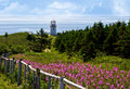 Gaspe peninsula quebec canada during summer time Royalty Free Stock Photos