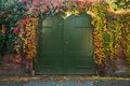 Gate with colorful Virinian creeper in autumn Royalty Free Stock Photos