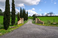Gate with driveway in tuscany Stock Images