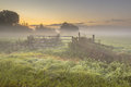 Gate and fences in Foggy farmland Royalty Free Stock Photo