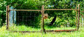 Gate of a meadow Royalty Free Stock Photo