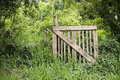 Gate to nowhere a in the middle of the woods Royalty Free Stock Images