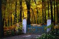 Gated driveway fall colors a on snake road in lake geneva wi surrounded by the gate says house in the wood private this is located Stock Photos