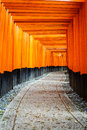 Gates tunnel inari torii fushimi inari shrine at kyoto japan shallow depth of field focus on both sides of the doors photo taken Stock Photography