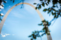 Gateway Arch framed by tree leaves Royalty Free Stock Photo