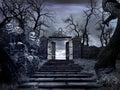 Gateway to the creepy garden