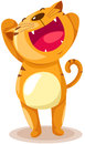 Gato engraçado Foto de Stock Royalty Free