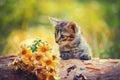 Gattino che esamina i fiori