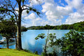 Gatun Lake Royalty Free Stock Photo