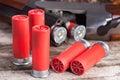 12 gauge shotgun shells Royalty Free Stock Photo