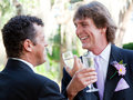 Gay Couple Toast Their Marriage Stock Images