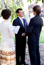 Gay Marriage - Saying Vows Royalty Free Stock Photo