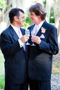 Gay wedding couple champagne toast toasting each other with at their Stock Photos