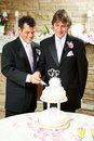 Gay Wedding - Grooms Cut Cake Stock Photography