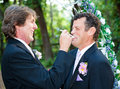 Gay wedding let him eat cake one groom at a feeding to his husband and laughing Stock Photography