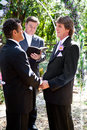 Gay wedding in the park handsome couple getting married outdoors Stock Photo
