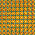 Gazania seamless composable pattern Royalty Free Stock Photography