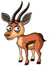 Gazelle with sad face on white background