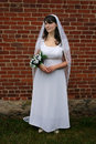 Gazing Bride Stock Photography