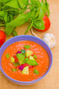 Gazpacho cold spanish soup made with tomatoes bell pepper cucumber and onion Stock Image