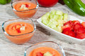 Gazpacho Royalty Free Stock Photo
