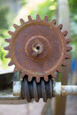Gear and worm old Royalty Free Stock Photo