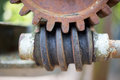 Gear and worm old Royalty Free Stock Photos