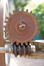 Gear and worm old Royalty Free Stock Image