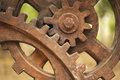 Gears in Industry Remains Park Royalty Free Stock Images