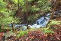 Gebirgsflußwasserfall im wilden Karpatenwald Lizenzfreies Stockfoto