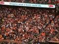 Gebl�se stehen und jubeln w�hrend des Weltmeisterschaftspiels zu Stockbild