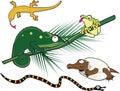 Geek Reptiles Royalty Free Stock Image