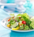 Geen garden salad Royalty Free Stock Photo