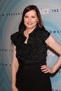 Geena davis at the women in film s crystal lucy awards beverly hilton hotel beverly hills ca Royalty Free Stock Images