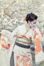 Geisha portrait of beautiful against blooming tree Stock Photos