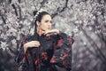 Geisha in red kimono in sakura Royalty Free Stock Photo
