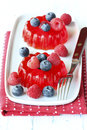 Gelatin with red fruits Stock Image